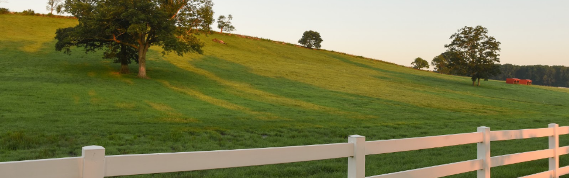 Horsebarn Hill at the University of Connecticut, a white fence surrounding a large, grassy hill